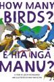 ECE How Many Birds Pdf
