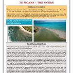 Enviro Edusheets Sheet5 Ocean Pdf