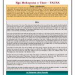 Enviro Edusheets Sheet7 Fauna Pdf