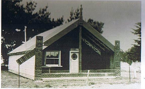 library-Nukutaimemeha1