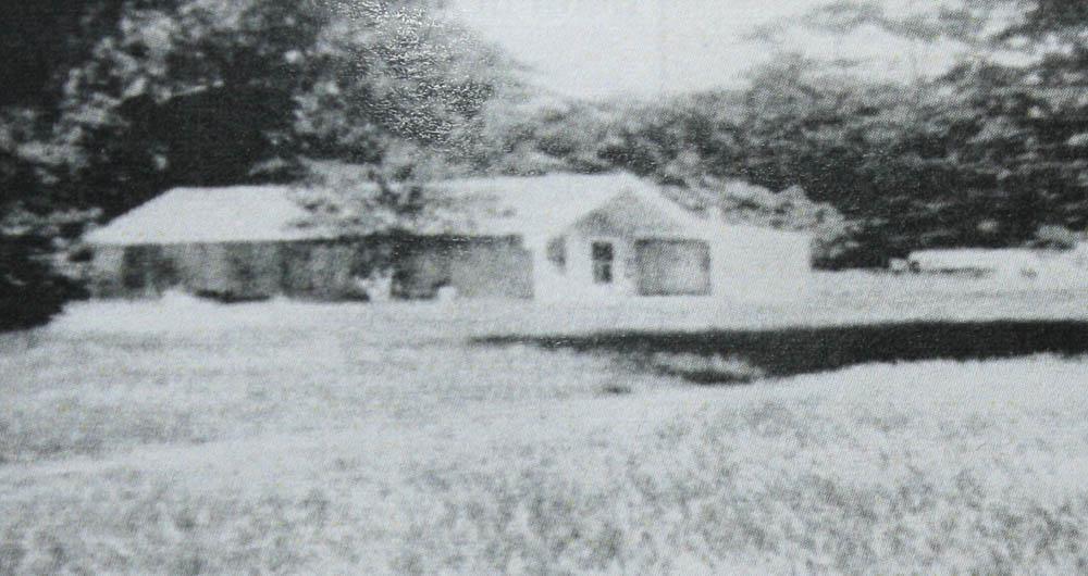 library-WhakatakiMarae